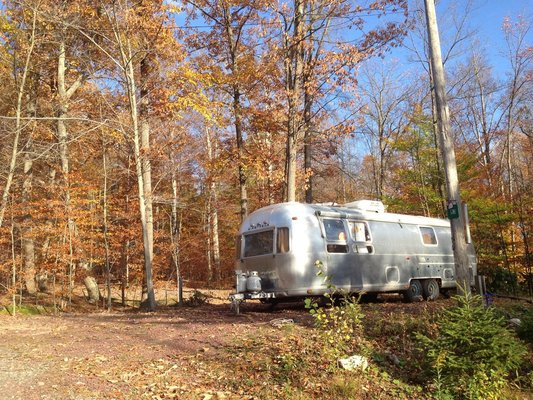 an Airstream in the foliage of a PA RV park
