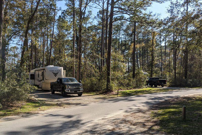 Carolina Beach State Park North Carolina State Park