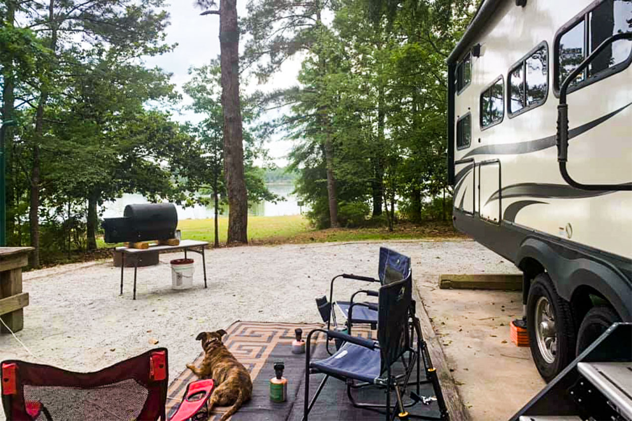 A dog hanging outside an RV by camp chairs and a grill.