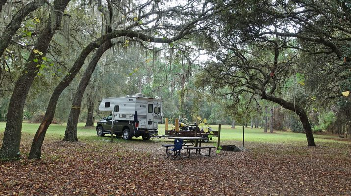 truck camper among the trees in florida